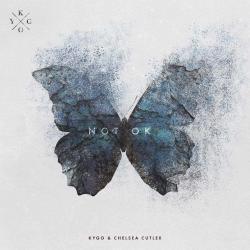 Disco 'Not Ok (ft Chelsea Cutler)' (2019) al que pertenece la canción 'Not Ok'