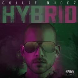 Disco 'Hybrid' (2019) al que pertenece la canción 'Time Flies'