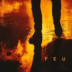 Disco 'Feu' (2015) al que pertenece la canción 'Point d'interrogation'