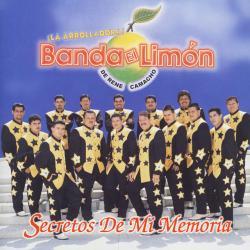 No he comprendido - La Arrolladora Banda El Limón | Secretos De Mi Memoria