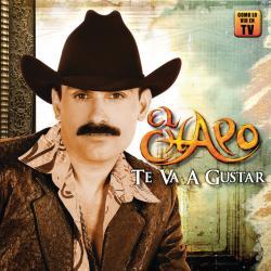 Si Te Agarran Las Ganas - El Chapo de Sinaloa | Te Va a Gustar
