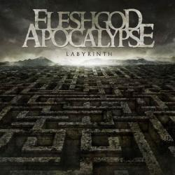 Disco 'Labyrinth' (2013) al que pertenece la canción 'Pathfinder'