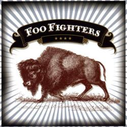 Skin and bones - Foo Fighters   Five Songs and a Cover