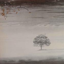 Disco 'Wind and Wuthering' (1976) al que pertenece la canción 'Afterglow'