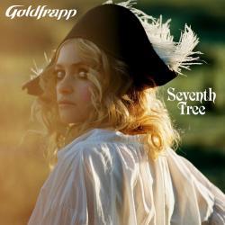 Disco 'Seventh Tree' (2008) al que pertenece la canción 'Road to Somewhere'
