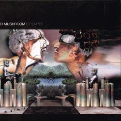 Disco 'B.P. Empire' (2001) al que pertenece la canción 'Tasty Mushroom'