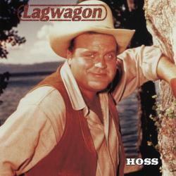 Disco 'Hoss' (1995) al que pertenece la canción 'Bombs Away'