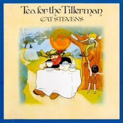 Sad Lisa - Cat Stevens | Tea for the Tillerman
