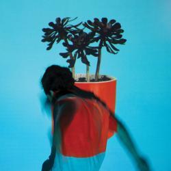 Disco 'Sunlit Youth' (2016) al que pertenece la canción 'Everything All at Once'