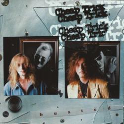 Disco 'Busted' (1990) al que pertenece la canción 'Can't Stop Fallin' Into Love'