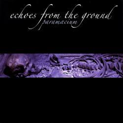 Disco 'Echoes From the Ground' (2004) al que pertenece la canción 'Night Fears Morning'