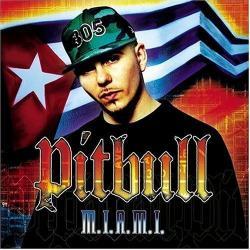 We Don't Care Bout Ya - Pitbull | M.I.A.M.I.