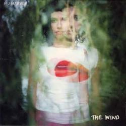 Disco 'The Wind (Single)' (1999) al que pertenece la canción 'Nina In Ecstasy'