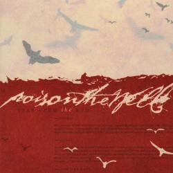 Disco 'Tear from the Red' (2002) al que pertenece la canción 'Botchla'