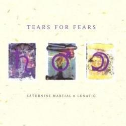 Ashes To Ashes - Tears For Fears | Saturnine Martial & Lunatic