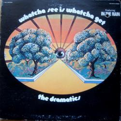 In The Rain - The Dramatics | Whatcha See Is Whatcha Get