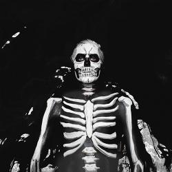 Disco 'Forever Halloween' (2013) al que pertenece la canción 'Run'