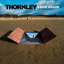Disco 'Come Again' (2004) al que pertenece la canción 'Come Again'