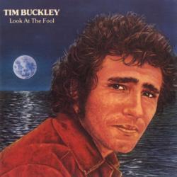 Disco 'Look at the Fool' (1974) al que pertenece la canción 'Freeway Blues'