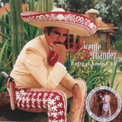 Disco 'Entre el amor y yo' (1998) al que pertenece la canción 'Bohemio De Afición'