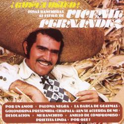 Mi ranchito - Vicente Fernández | ¡Gusta usted! Joyas rancheras al estilo de Vicente Fernández
