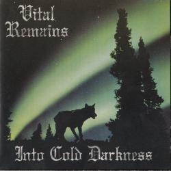 Disco 'Into Cold Darkness' (1995) al que pertenece la canción 'Scrolls Of A Millenium Past'