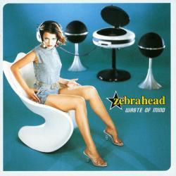 Disco 'Waste of Mind' (1998) al que pertenece la canción 'Fly Daze'