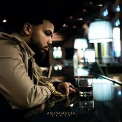 Disco 'ABUNDANCIA' (2016) al que pertenece la canción 'Abundancia'