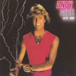 Dreamin' on - Andy Gibb | After Dark