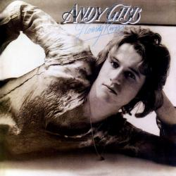 In the end - Andy Gibb | Flowing Rivers