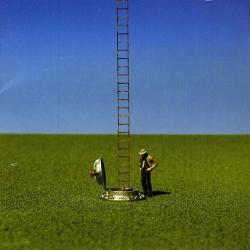 Disco 'Hormigas' (2007) al que pertenece la canción 'El campo sin fin'