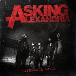 Disco 'Life Gone Wild' (2010) al que pertenece la canción '18 and Life'