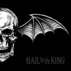 Doing Time - Avenged Sevenfold | Hail to the King
