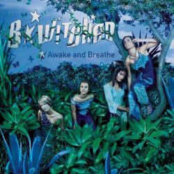 Disco 'Awake and Breathe' (1999) al que pertenece la canción 'The Shy One'