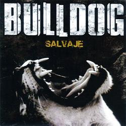 Un, Dos, tres (salvaje) - Bulldog | Salvaje