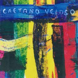 Minha Voz, Minha Vida - Caetano Veloso | Livro