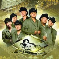 Disco 'Puros corridos venenosos' (2006) al que pertenece la canción 'Un puño de tierra'