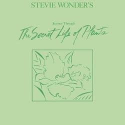 Disco 'Stevie Wonder's Journey Through The Secret Life Of Plants' (1979) al que pertenece la canción 'Kesse Ye Lolo De Ye'