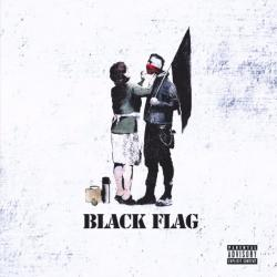 Disco 'Black Flag' (2013) al que pertenece la canción 'Darkside of the Moon'