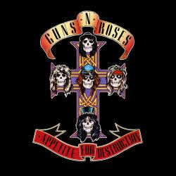 Anything Goes - Guns N' Roses | Appetite For Destruction