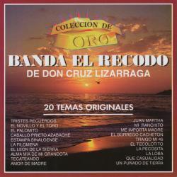 Ayer Y Hoy - Banda El Recodo De Cruz Lizárraga | Coleccion De Oro