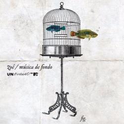 Labios Rotos - Zoé | MTV Unplugged Música de Fondo