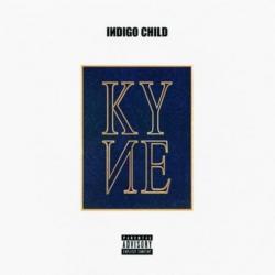 Disco 'Indigo Child (Mixtape)' (2016) al que pertenece la canción 'Hurt'