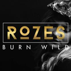 Disco 'Burn Wild' al que pertenece la canción 'Everything'