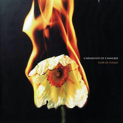 Flor De Fuego - Baby Cohete