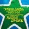 Disco de la canción Brasil Afora