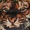 Disco de la canción Eye Of The Tiger