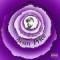 Disco de la canción Dave Winfield (ft.  Vic Spencer)