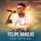 Disco de la canción Atrasadinha (ft. Ferrugem) (en español)