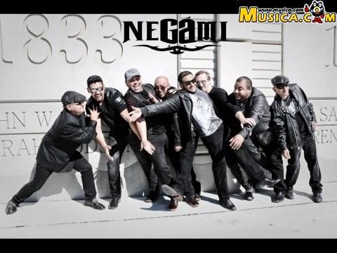 Negami